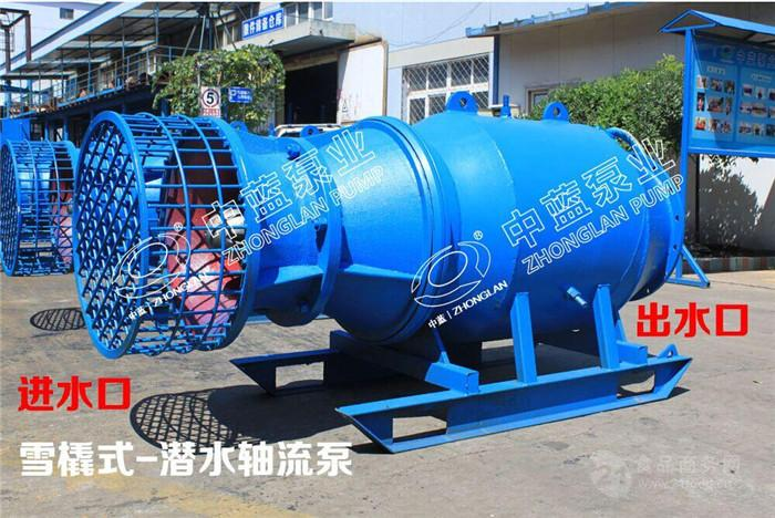 知名厂家供应雪橇式轴流泵-潜水轴流泵厂家价格