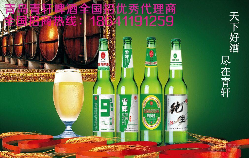 啤酒招商上海啤酒代理加盟易拉罐啤酒