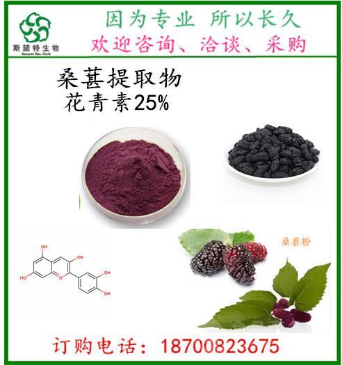 桑葚提取物 10:1 天然染料着色剂 饮料保健品添加原料