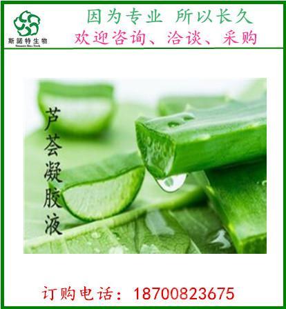 斯诺特生物  芦荟提取液  天然库拉索芦荟凝胶汁液
