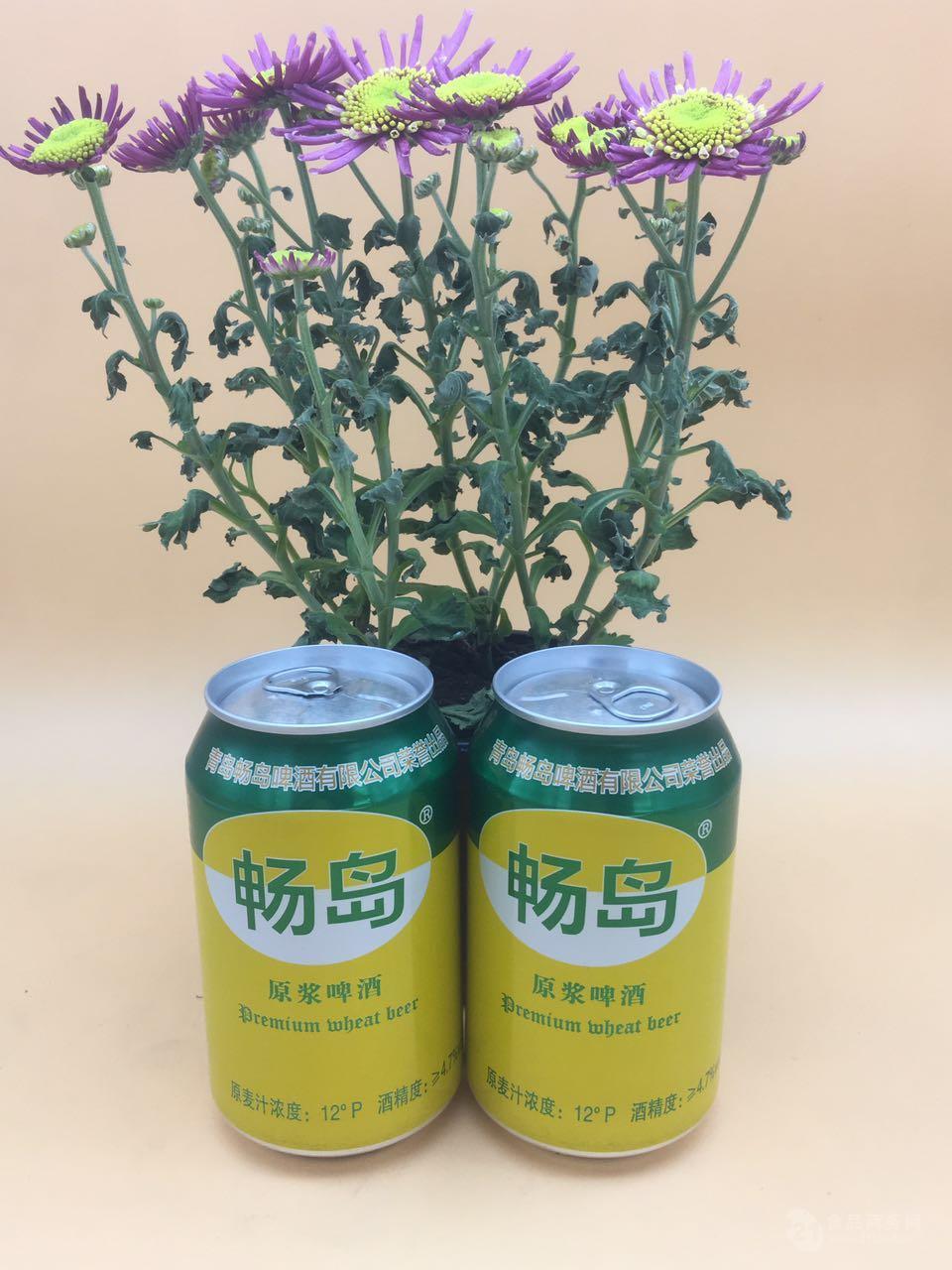 青岛畅岛小罐啤酒全国招商
