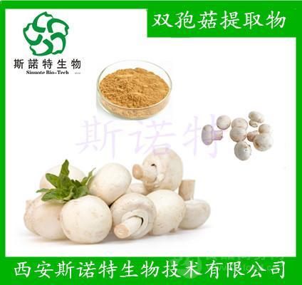 双孢菇提取物   双孢菇粉  双孢菇多糖 斯诺特厂家