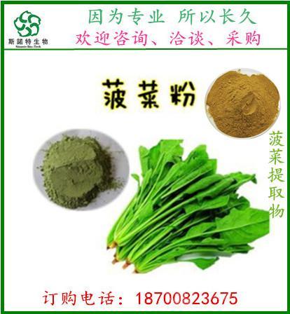 菠菜粉 面制品着色菠菜粉 食品面条调味原料 斯诺特