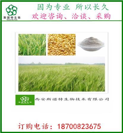 小麦胚芽粉/速溶胚芽粉/酶解胚芽粉/小麦胚粉/代餐粉基料