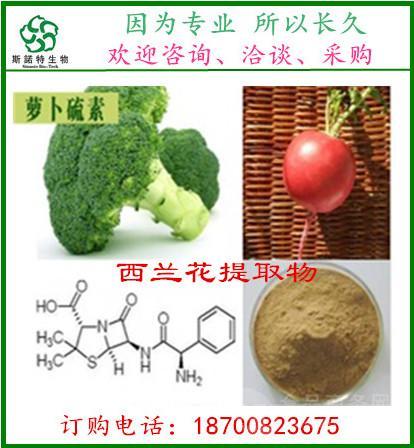 西兰花提取物10:1 萝卜硫素 天然植物提取 厂家直销 实物拍摄