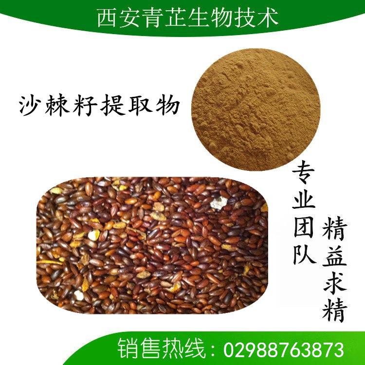 沙棘籽水提物 沙棘籽粉 沙棘籽提取液