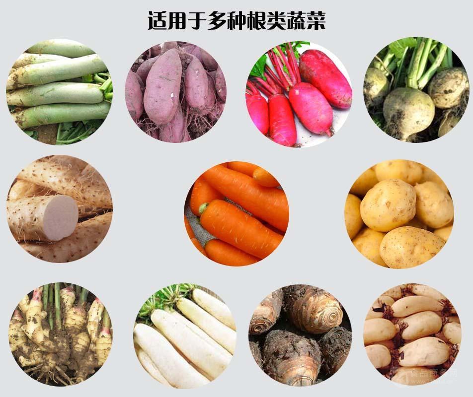 鲜姜 花生清洗机 根茎类蔬菜清洗机