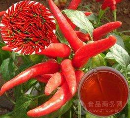 辣椒提取物 含量10:1 红辣椒提取物 厂家直销