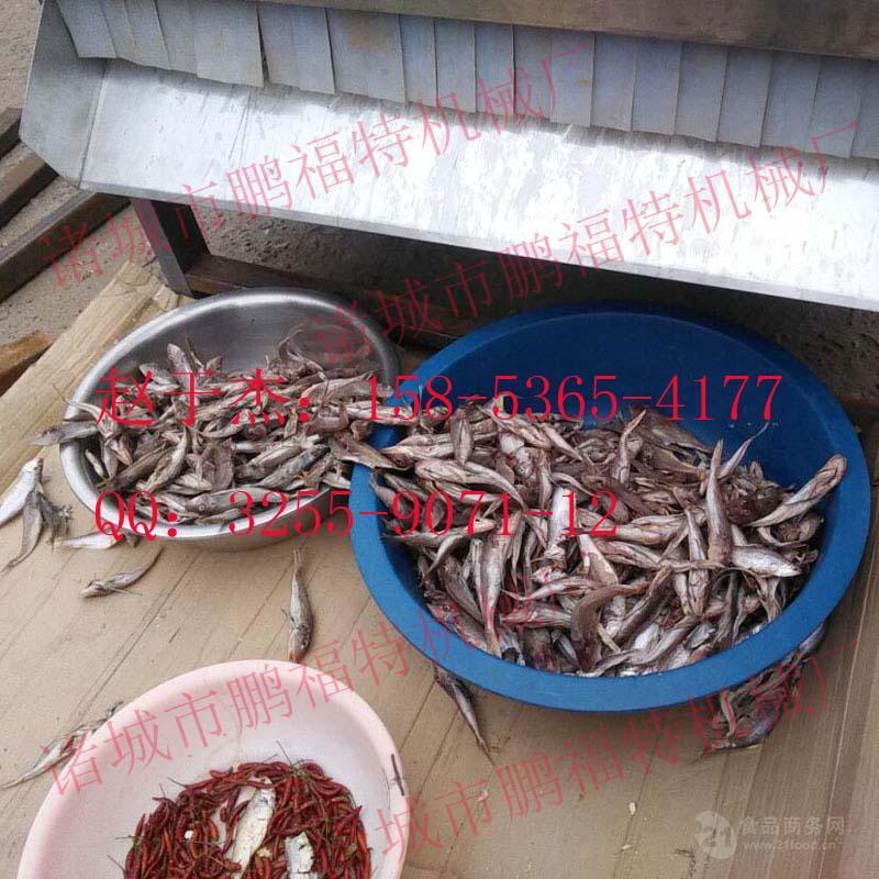 供应鹏福特鱼类烘干机 五层烘干机 网带烘干机