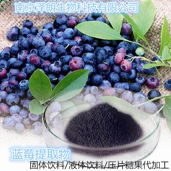 蓝莓果粉  蓝莓粉  南京厂家可以按照要求代加工固体饮料