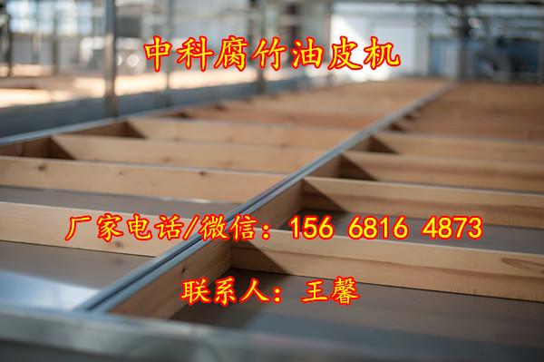 潮阳手工豆油皮机器,广东小型腐竹油皮机,免费传授生产技术