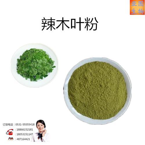 辣木叶提取物:辣木叶粉
