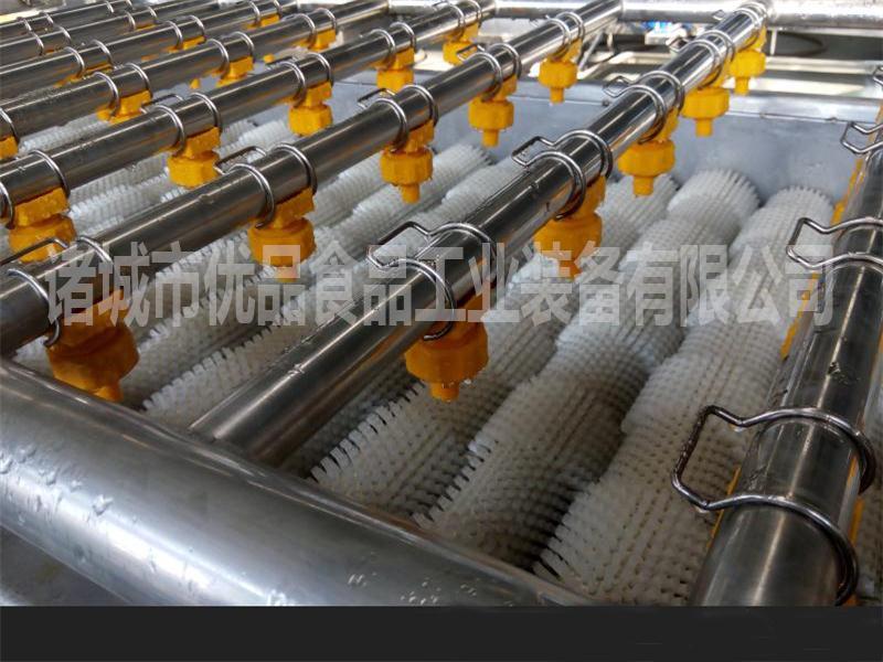 优品草莓气泡清洗机 多功能气泡清洗机 诸城食品机械厂