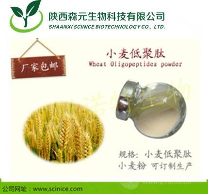 小麦低聚肽 小麦多肽 新资源食品 厂家现货包邮