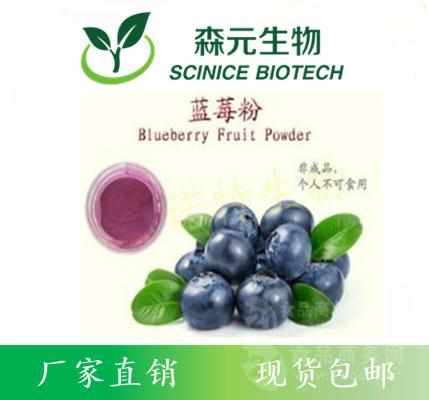 蓝莓膳食纤维粉 原料厂家现货供应