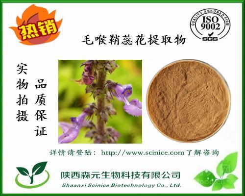 毛喉鞘蕊花提取物 10:1 含弗斯可林 毛喉鞘蕊花粉 厂家现货包邮