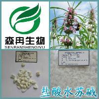 盐酸水苏碱98%  厂家现货直供益母草提取物1kg起订