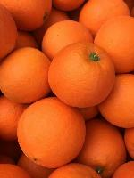 湖北秭歸臍橙代辦/四季批發秭歸臍橙