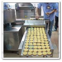 玉林核桃饼机设备,全国联保