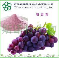 葡萄粉   红葡萄粉   斯诺特厂家现货直销   葡萄提取物