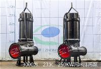 250QW池用不锈钢潜水污水泵