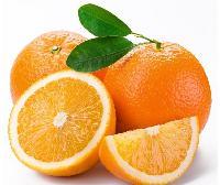 新鲜食材供应商农产品一站式采购配送食堂服务--橙子