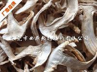 西原蘑菇香菇热泵烘干机 平菇猴头菇干燥设备 鸡腿菇草菇节能烤房
