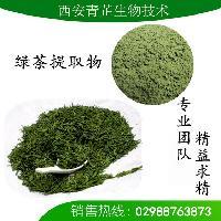 绿茶粉 绿茶果汁粉 抹茶粉 绿茶提取物