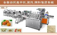 理料包装线国内专业制造商