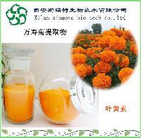 叶黄素5%  斯诺特厂家现货直供   万寿菊提取物10:1