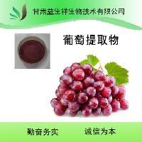 优质葡萄酵素粉  葡萄提取物   基地种植