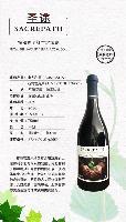 澳洲进口红酒生意招商 澳大利亚圣途干红葡萄洒