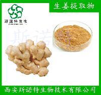 生姜提取物 姜辣素5% 生姜浸膏 生姜 姜辣素5   斯诺特厂家