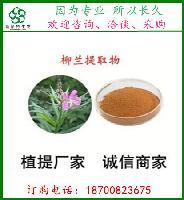 柳兰提取物10:1   柳兰粉     全水溶  喷雾干燥粉 斯诺特生物