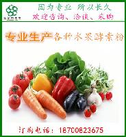 综合水果酵素  代餐果蔬粉原料   斯诺特生物主打