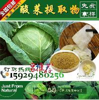 酸菜提取物10:1 酸白菜提取物 腌菜提取物