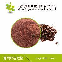 赛扬供应 95%葡萄籽提取物 价格优惠 质量保证 全国包邮