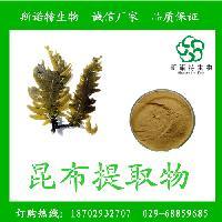 昆布提取物10:1 昆布速溶粉 现货供应