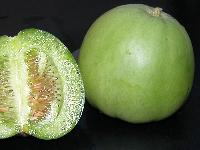 新鲜食材蔬菜配送农产品一站式采购配送食堂服务--香瓜