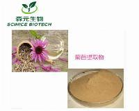 菊苣提取物 30:1 菊苣浓缩粉 高比例 高品质 工厂现货库存量大