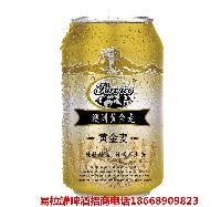 贵州贵阳地区品牌易拉罐啤酒招代理商