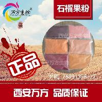 西安万方-石榴粉 石榴汁速溶粉-全新上市,厂家直销包邮