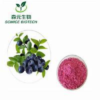优质蓝莓粉 蓝莓汁粉 蓝莓果粉 厂家直供 欢迎订购