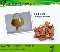 高良姜提取物  药食同源 优质现货