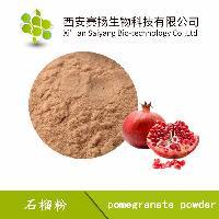 现货供应新鲜石榴果汁粉使用方便易保存1公斤起批全国包邮