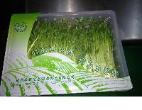 小型豆芽菜封盒气调包装机