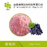 优质葡萄粉喷雾干燥食品饮料葡萄汁粉果蔬粉现货