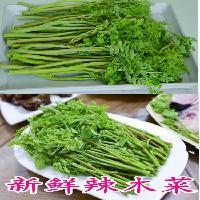 長期批發辣木菜辣木葉真空包裝長期保鮮