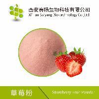【赛扬生物】水溶草莓粉 喷雾干燥 草莓果汁粉 大量现货