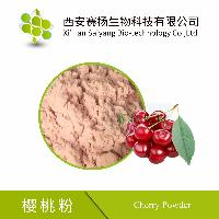 赛扬供应樱桃粉品质保证新鲜樱桃萃取使用方便易保存全国包邮